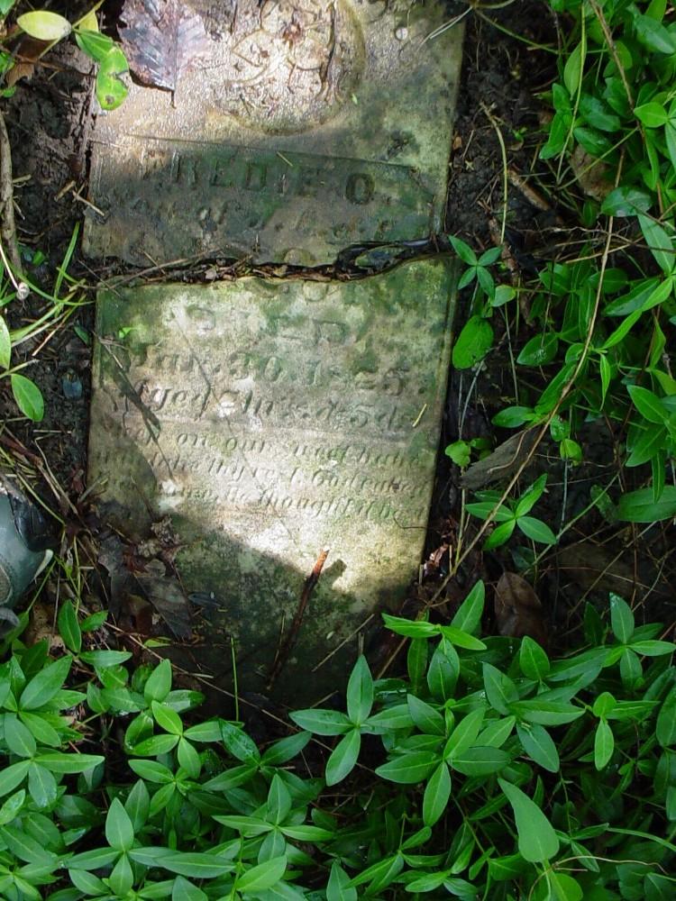 Freddie O. Cason Headstone Photo, Cason Family Cemetery, Callaway County genealogy