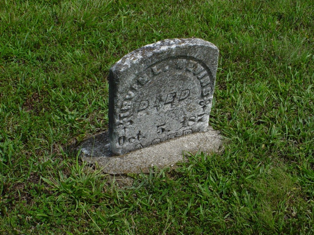 Irvin L. Nevins Headstone Photo, Dry Fork Cemetery, Callaway County genealogy