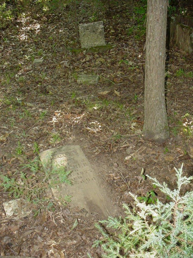 Judith Leroy Fletcher Headstone Photo, Fletcher - Hill Cemetery, Callaway County genealogy