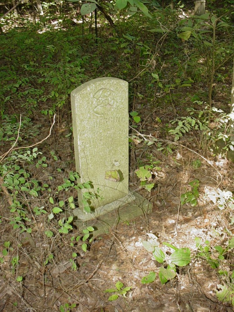 George Washington Herring Sr. Headstone Photo, Herring Private Cemetery #1, Callaway County genealogy