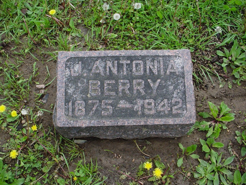 James A. Berry Headstone Photo, Hillcrest Cemetery, Callaway County genealogy