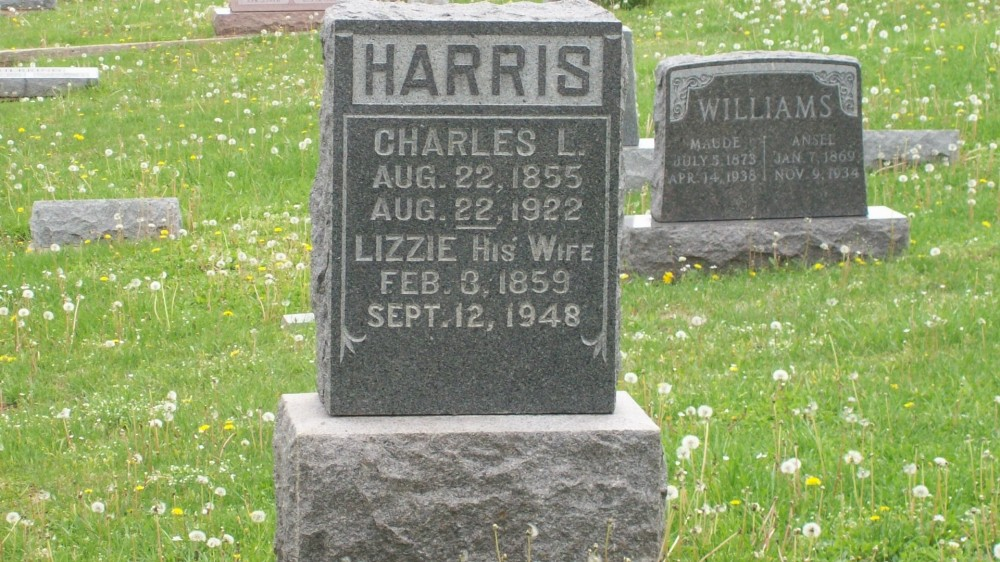 Charles L. Harris & Lizzie Robinson Headstone Photo, Hillcrest Cemetery, Callaway County genealogy