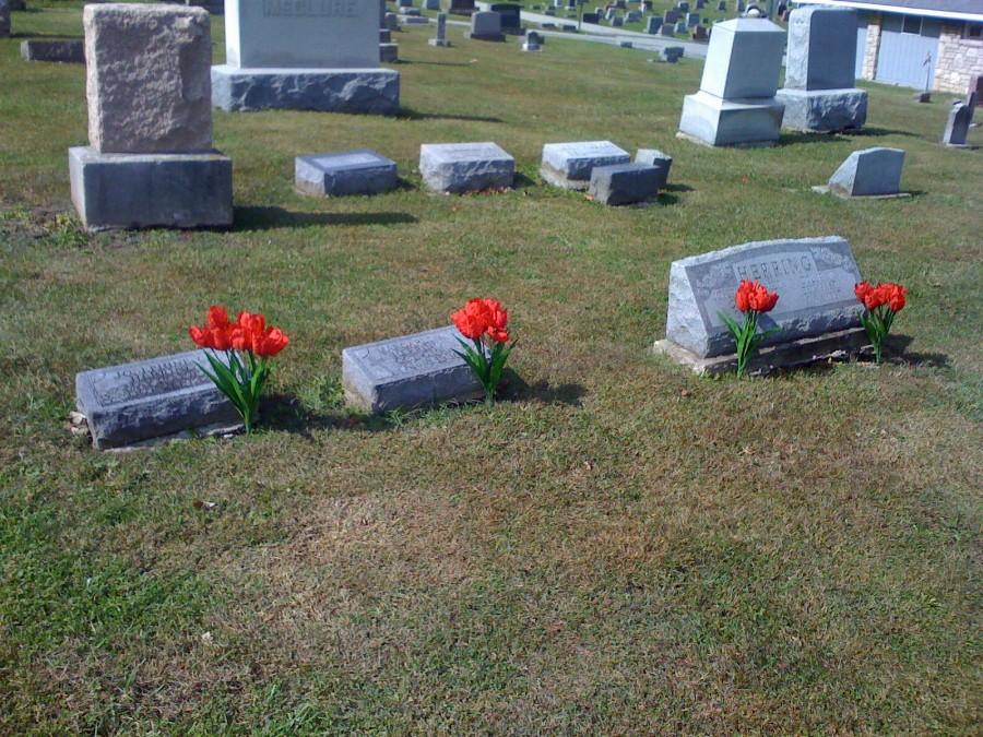 Herring family Headstone Photo, Hillcrest Cemetery, Callaway County genealogy